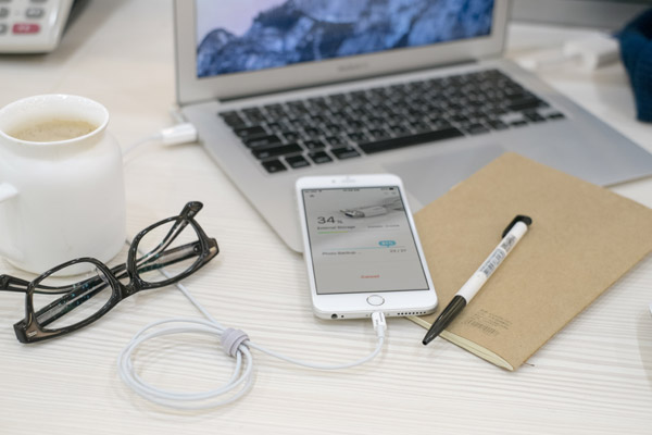 Photo Backup Cable